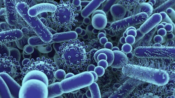 Scientific Research on Virus